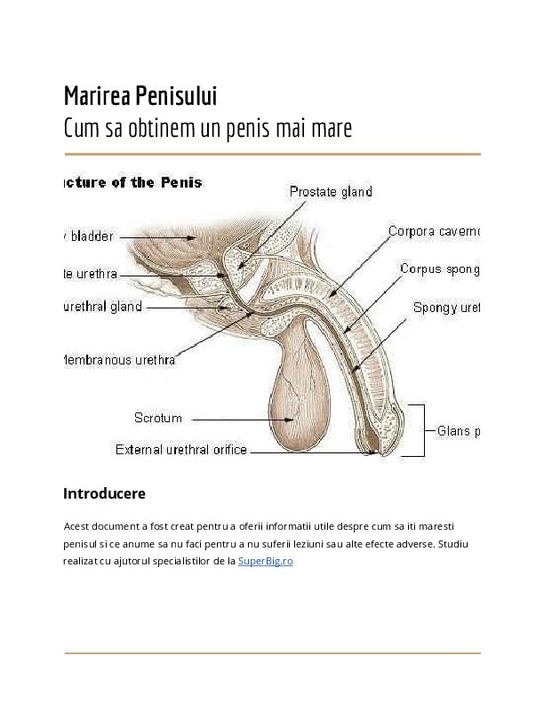 penisuri după pompă