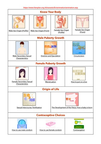 Prospecte Medicamente litera S