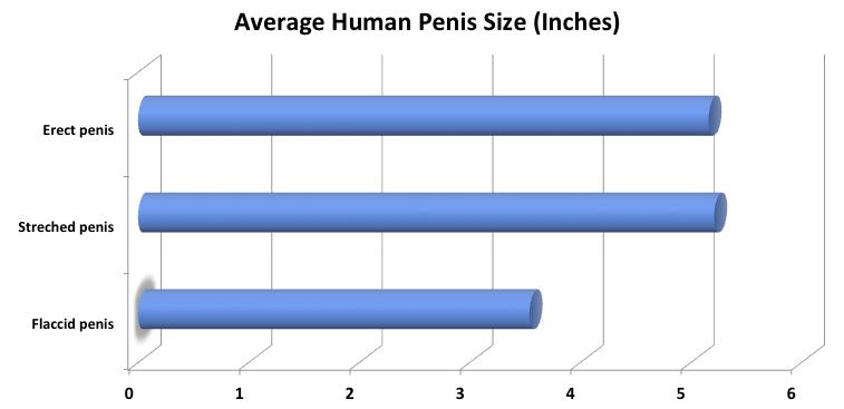 dacă penisul meu este mic