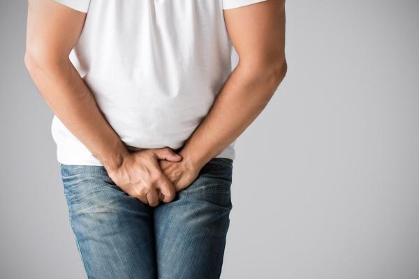 în timpul unei erecții, testiculele dispar ce ajută la prelungirea erecției